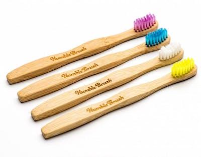 The humble brush, tandborste